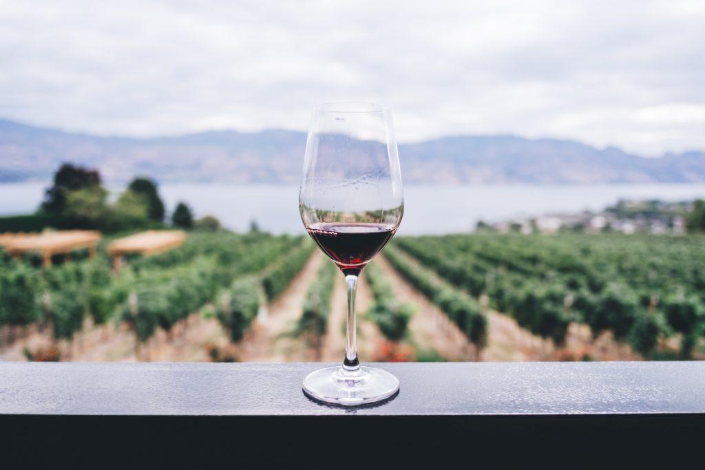 Degustazione di vini: ogni uva ha le proprie caratteristiche.